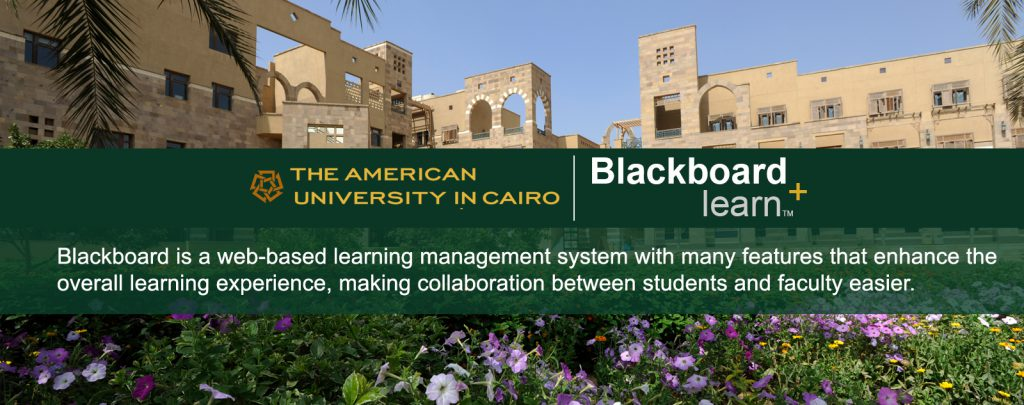 Blackboard Learn Banner
